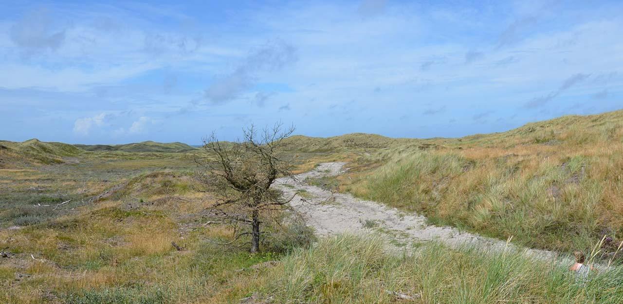 Picture of: Opbevaring Af Campingvogn I Nordjylland Samt Bil Og Bad