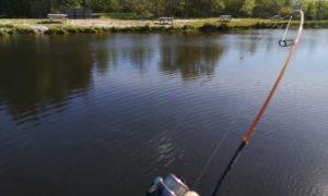 ul lystfiskeri